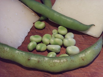 Pecorino with broad beans